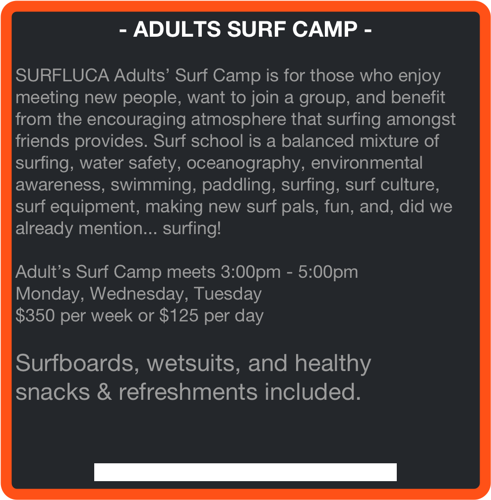 - ADULTS SURF CAMP -